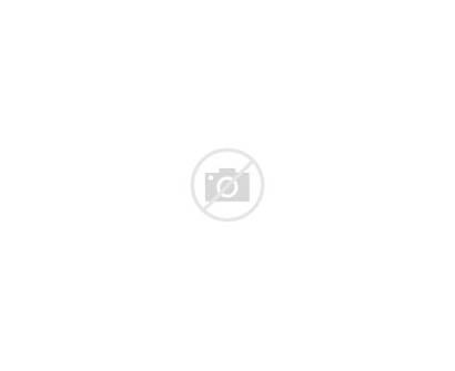 Template Fold Tri Brochure Corporate Rainbow Professional