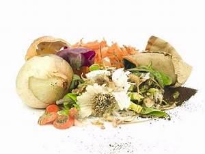Recycleyourfood