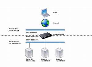 Common Network Topologies