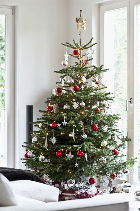 tips  decorating  holiday tree   pro