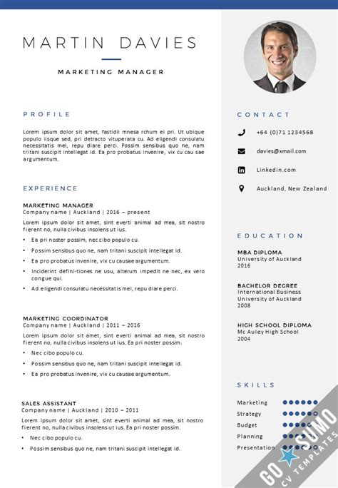Professional Cv Template Word by 49 Best Go Sumo Cv Templates Resume Curriculum Vitae