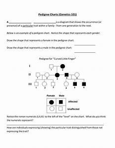 Pedigree Charts Genetics 101