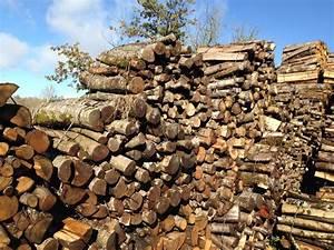 1 Stere De Bois Poids : 1 m st re prunier ~ Dailycaller-alerts.com Idées de Décoration