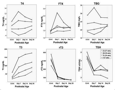 Pediatric Thyroid Reference Ranges