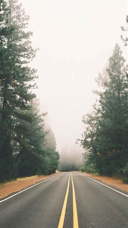 Iphone Road Foggy Plus Pine Wallpapers Autumn