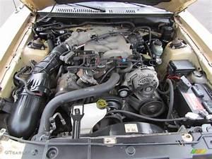 2000 Ford Mustang V6 Coupe 3.8 Liter OHV 12-Valve V6 Engine Photo #72214226 | GTCarLot.com