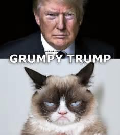 Donald Trump Grumpy Cat Memes Funny