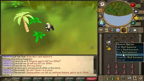Recipe For Disaster Quest Guide  Awowogei Monkey