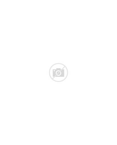 False Sense Concern Lack Security Cartoon Bargain