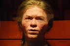 What did Paleolithic/Mesolithic Europeans look like ...