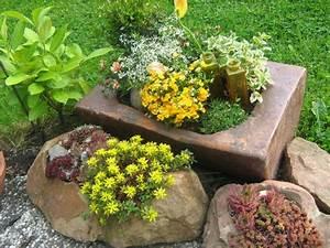Steine Zum Bepflanzen : bild 35 aus beitrag entdeckergarten ~ Eleganceandgraceweddings.com Haus und Dekorationen