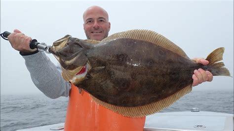 doormat flounder fishing for tournament doormat fluke summer flounder