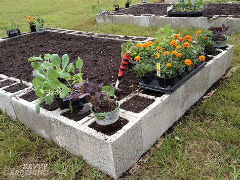 elevated beds walmart concrete block raised beds