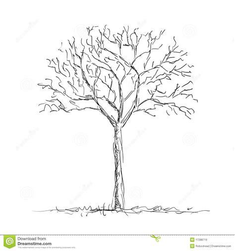 bare tree stock illustration illustration  black