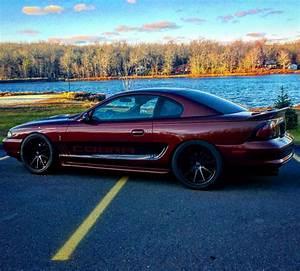 97 cobra | Mustang cobra, Mustang, Cool cars