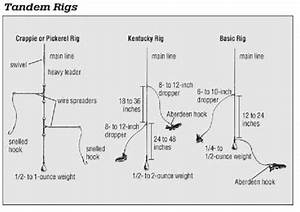 Selecting And Rigging Minnows For Crappie  A Definitive Guide