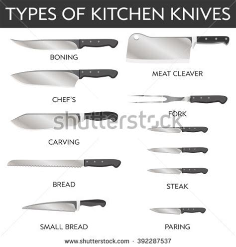 type of kitchen knives vector illustration types kitchen knives stock vector