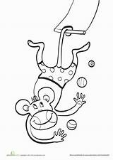 Circus Coloring Trapeze Animals Monkey Pages Animal Worksheet Education Worksheets Template Preschool Sheets Artist Acrobat Acts Crafts sketch template