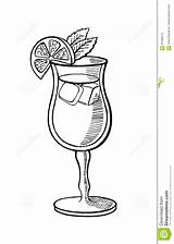 Cocktail Hand Alcoholic Drawn Illustration Drawing Pencil Beverage Icon Ice Orange Royalty sketch template