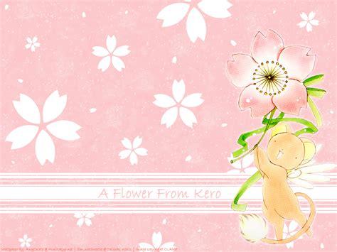 kerberos images keroberos hd wallpaper  background