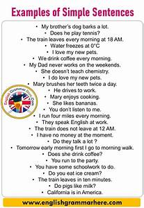 English Exampe Sentences  50 Examples Of Simple Sentences