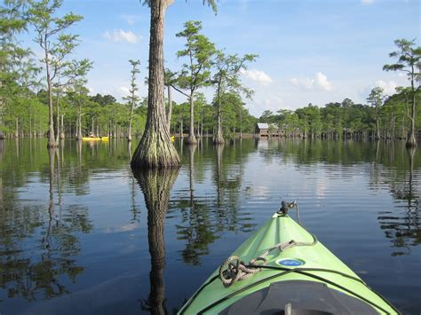 Top 5 Must-Visit Lesser-Known Georgia State Parks ...