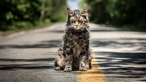 sxsw  pet sematary review  definitive