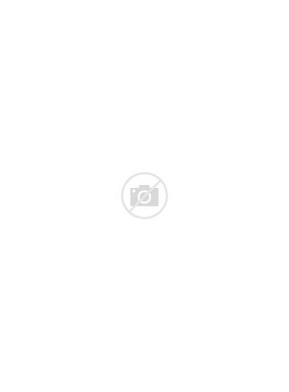 Guide Lifestyle Sustainable Boeken Marieke Wonen Algemeen