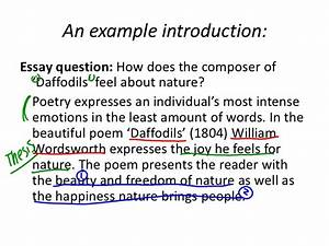 Poetry Explication Essay Example  How To Create A Thesis