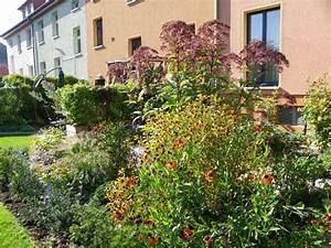 Garten Im Herbst : ein gemusegarten im herbst ~ Whattoseeinmadrid.com Haus und Dekorationen