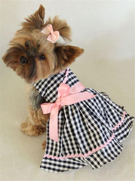 doggy clothes ideas  pinterest diy yorkie