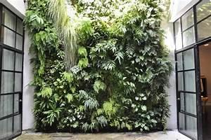 Mur Végétal Extérieur : mur v g tal int rieur et ext rieur en 21 photos ~ Premium-room.com Idées de Décoration