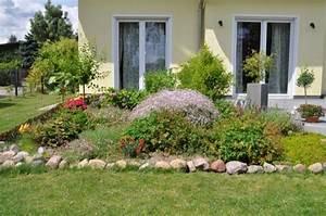 Pflanzen Im Juli : vorher nachher 1 woche blumen pflanzen wachstum hausbau blog ~ Orissabook.com Haus und Dekorationen