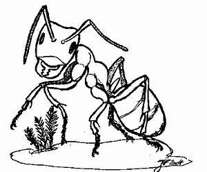 Ameisen Mit Flügel : die ameisen am lebendigen bienenmuseum kn llwald ~ Buech-reservation.com Haus und Dekorationen