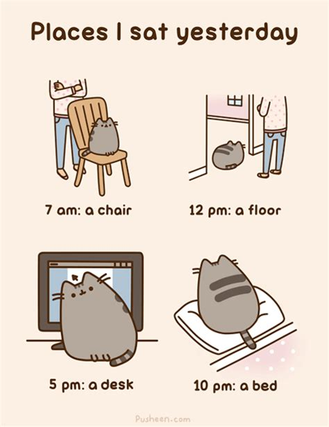 Pusheen Cat Meme - places i sat yesterday pusheen know your meme