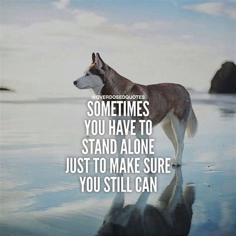 Come check it out and see what all the hype is life changing quotes about death and love. Sometimes You Have To Stand Alone life quotes quotes quote ...