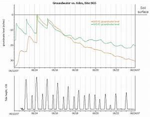 Groundwater Fluctuation Vs  Tide Cycles At Tidal Swamp