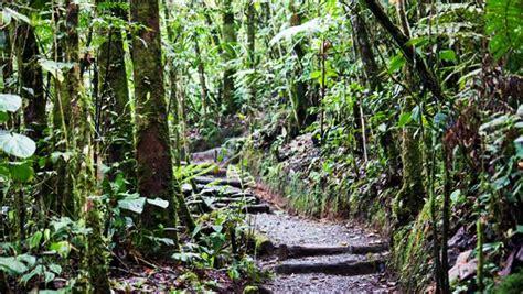 biotopo del quetzal lugares  los  puedes ir