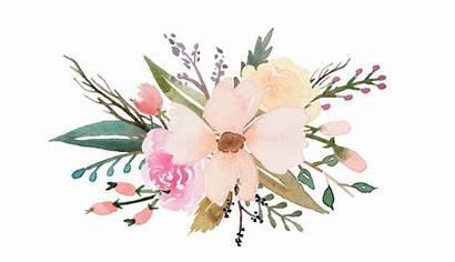Watercolor Succulent Clipart Easy Transparent Flower Bouquet