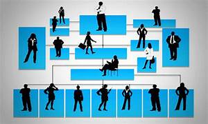 Why Organizational Charts Are Important And How To Create One Easily