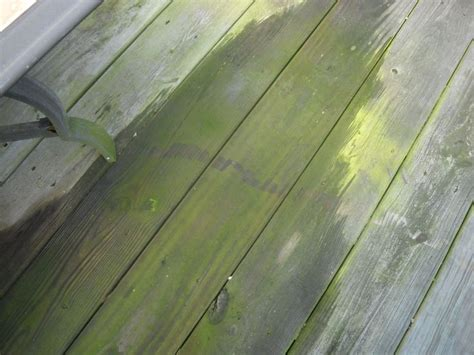 Cleaning Deck With Solution by Easy Eco Friendly Tips For Deck Cleaning