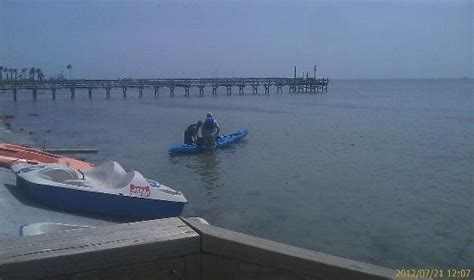 Rockport Boat Rentals by Kayak And Paddle Boat Rentals Picture Of Rockport