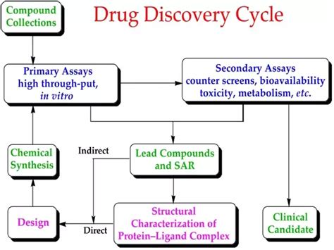 start  process  developing  drug
