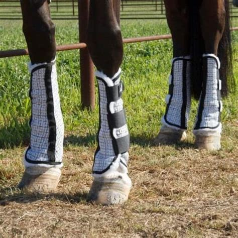 leg wraps boots horse equine sport fly health