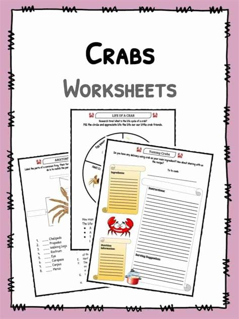 crab facts and worksheets for 594 | Crabs Worksheet 7