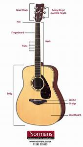 What Are The Parts Of An Acoustic Guitar Called   U2013 Normans