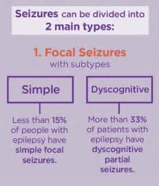 Statistics Seizure Epilepsy