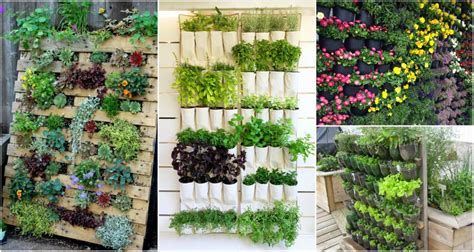 Diy Vertical Garden Cheap by Top 10 Diy Vertical Garden Ideas That You Will Find Helpful