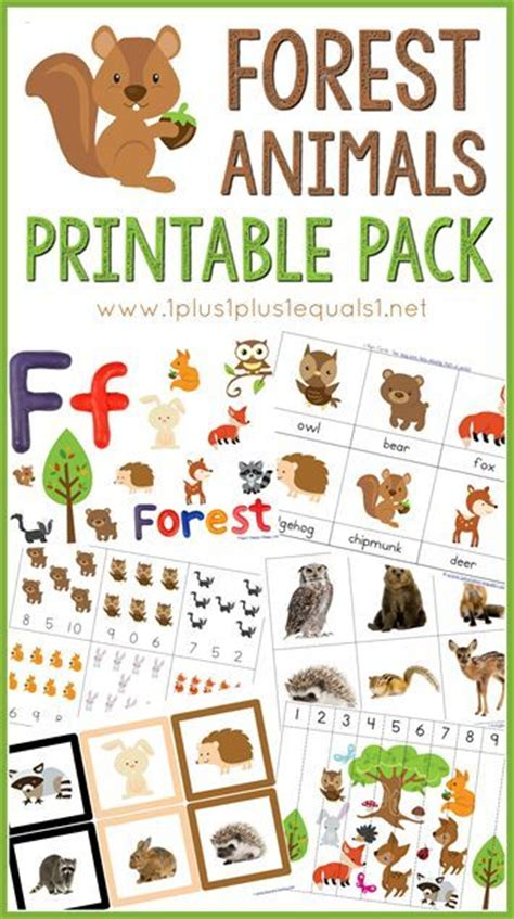 forest preschool theme 18 best forest animals theme images on 802