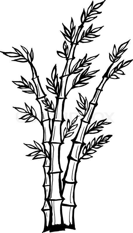 cartoon bamboo tree drawing stock vector  hand drawn